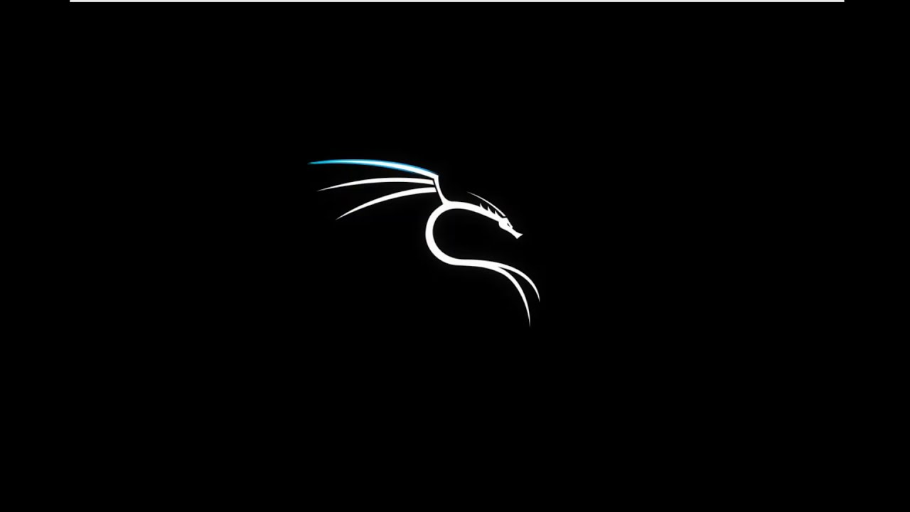 How To Install Kali Linux On VMware Workstation > BENISNOUS